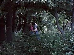 Classic Sheet Clip.1 (Butterflies-1975) HD